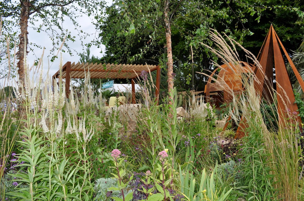 Rain garden design at RHS Tatton