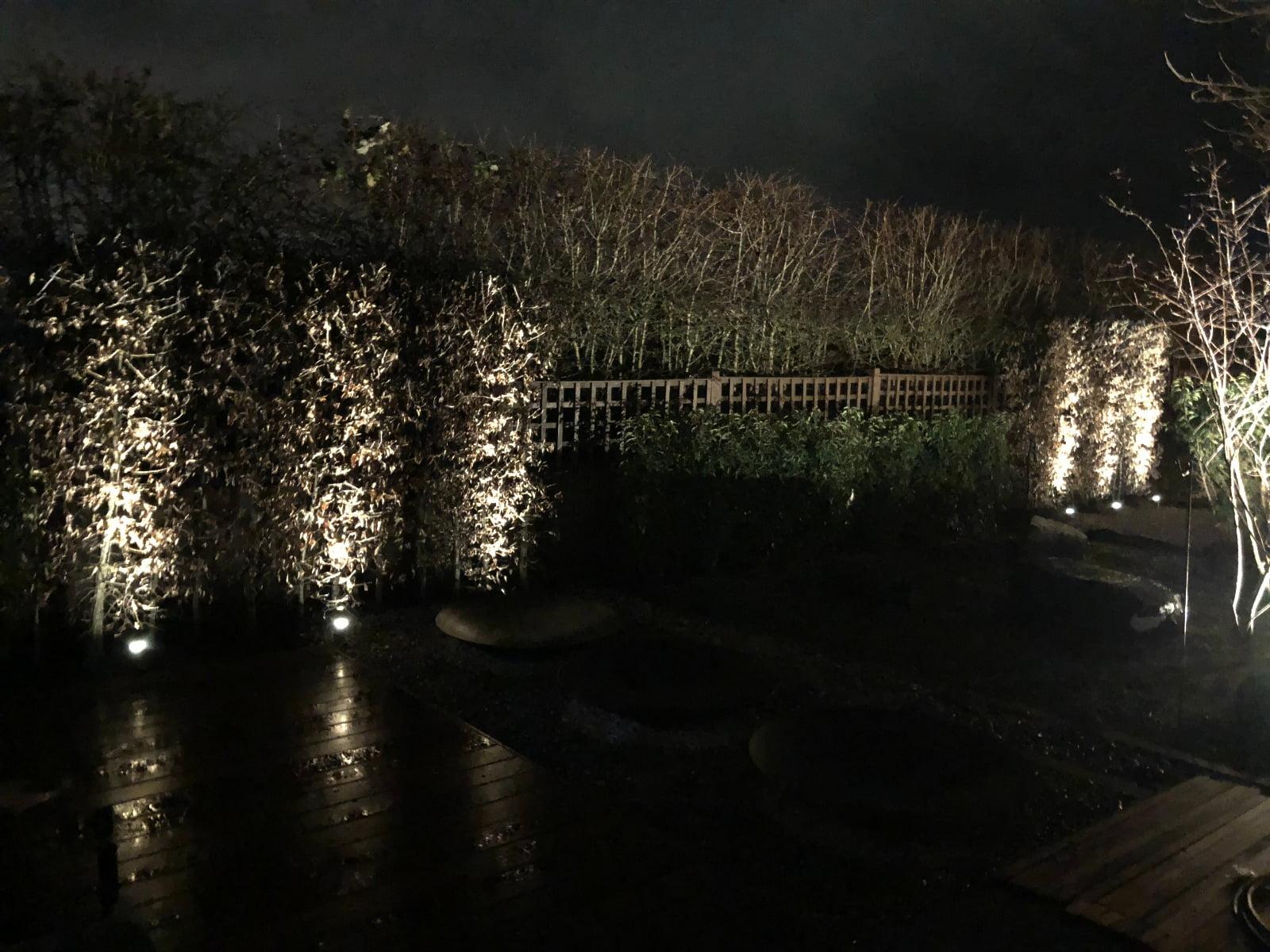 Garden lighting in landscape design by Warnes- McGarr & Co.